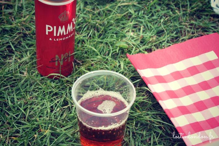 picnic pimm's