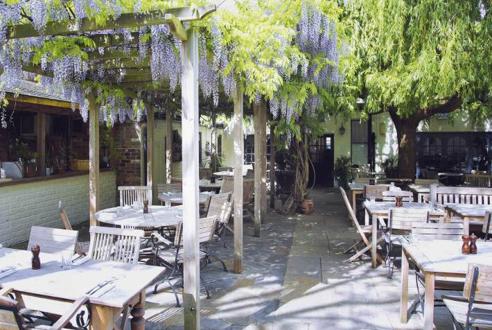the albion pub islington